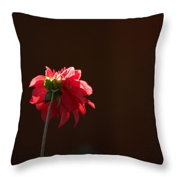 Black With Rose Throw Pillow