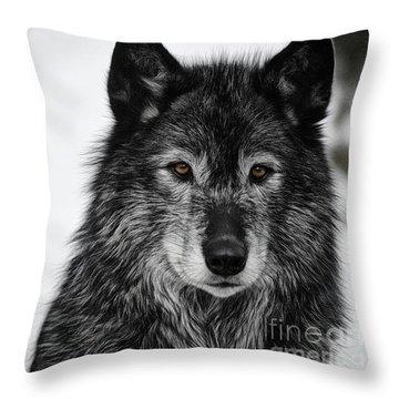 Black Wolf I Throw Pillow