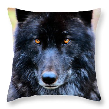 Black Wolf Throw Pillow by Nick Gustafson