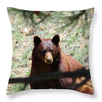 Blackbear1 Throw Pillow