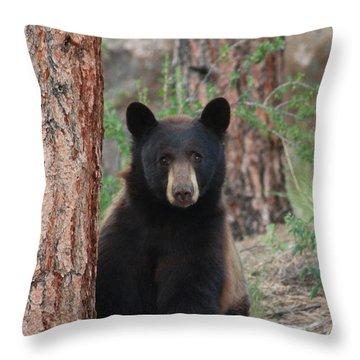 Blackbear2 Throw Pillow