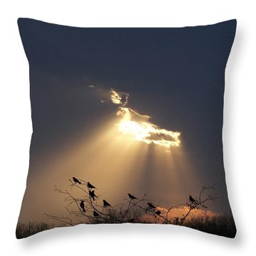 Blackbird Sky Throw Pillow by Gale Cochran-Smith