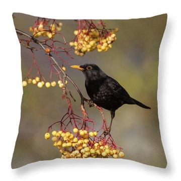Blackbird Yellow Berries Throw Pillow