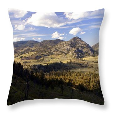 Blacktail Road Landscape Throw Pillow by Marty Koch