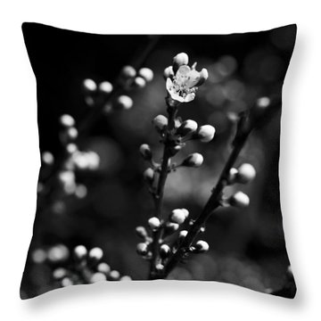 Throw Pillow featuring the photograph Blackthorn Flower by David Isaacson
