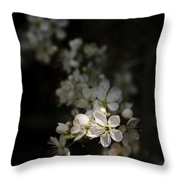 Throw Pillow featuring the photograph Blackthorn Flowers by David Isaacson