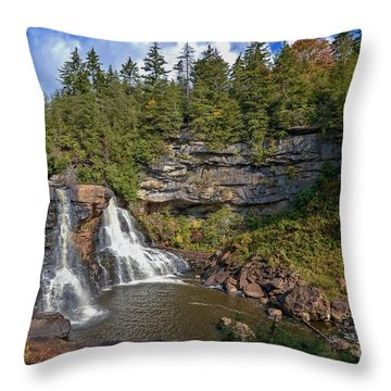 Blackwater Falls  In Autumn 3879c Throw Pillow