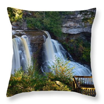 Blackwater Falls Throw Pillow