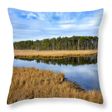 Throw Pillow featuring the photograph Blackwater National Wildlife Refuge In Maryland by Brendan Reals
