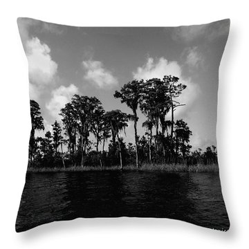 Throw Pillow featuring the photograph Blackwater River by Janice Spivey