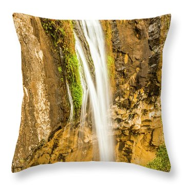 Blackwood Forest Waterfall Throw Pillow