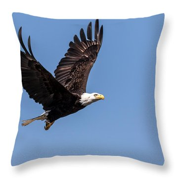 Blad Eagle Flying High Throw Pillow