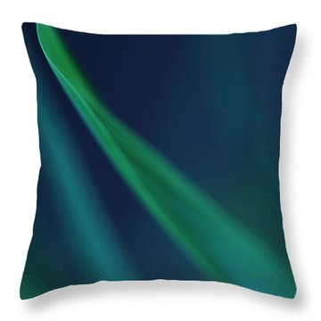 Blade Of Grass  Throw Pillow by Debbie Oppermann