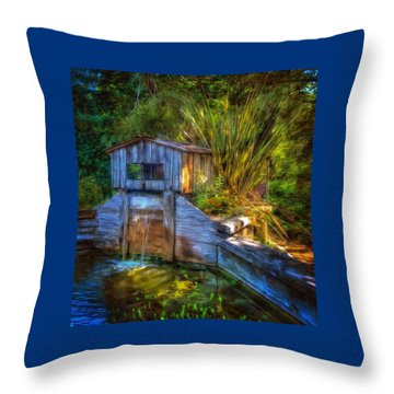 Blakes Pond House Throw Pillow by Thom Zehrfeld