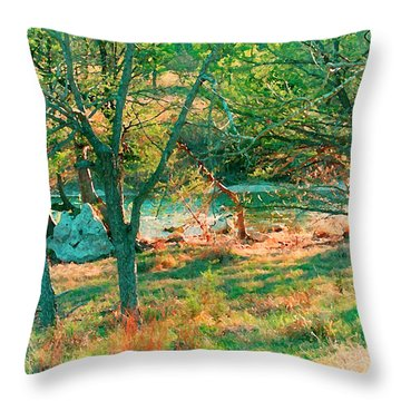 Blanco River Texas Throw Pillow by Fred Jinkins