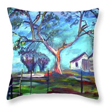Blanco Texas Ranch House Throw Pillow