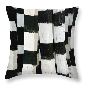 Throw Pillow featuring the photograph Blanco Y Negro by Skip Hunt