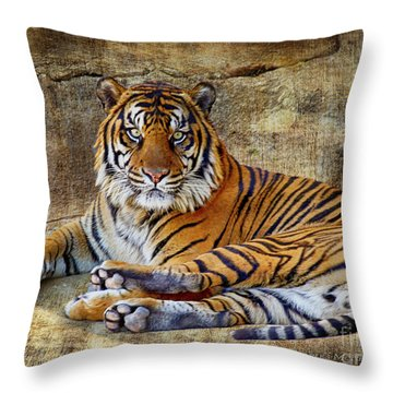 Throw Pillow featuring the photograph Blank Stare by Charles McKelroy