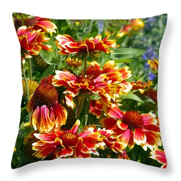 Blanket Flowers Throw Pillow by Sharon Talson