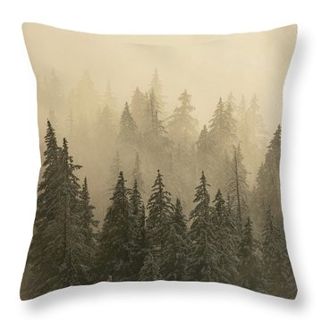 Throw Pillow featuring the photograph Blanket Of Back-lit Fog by Dustin LeFevre