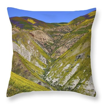 Blanket Of Wildflowers Cover The Temblor Range At Carrizo Plain National Monument Throw Pillow