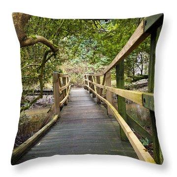 Blarney Boardwalk Throw Pillow by Rae Tucker