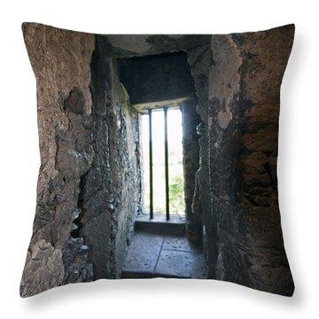 Blarney Castle Hallway Throw Pillow