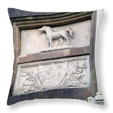 Blarney House Detail Throw Pillow