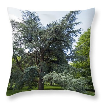 Blarney House Grounds Throw Pillow