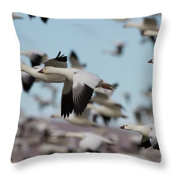 Blast Off In The Socorro Skies  Throw Pillow