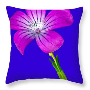 Blasting Flower Throw Pillow