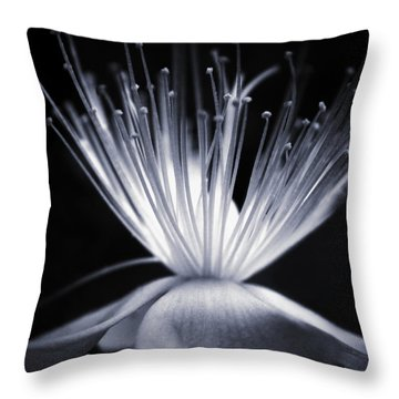 Blaze Throw Pillow by Dorit Fuhg