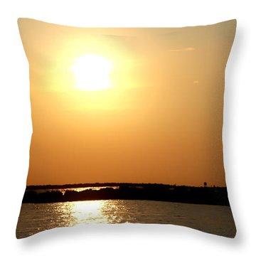 Blaze Of Glory Throw Pillow by Debra Forand
