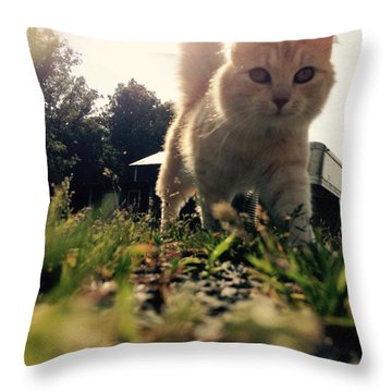 Blaze The Cat Throw Pillow by Mary Tron