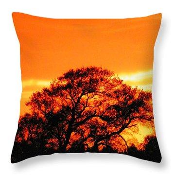 Blazing Oak Tree Throw Pillow by Karen Wiles