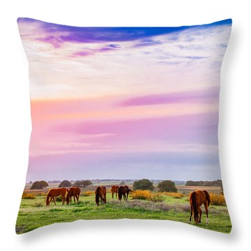 Blazing Sky Diner Throw Pillow