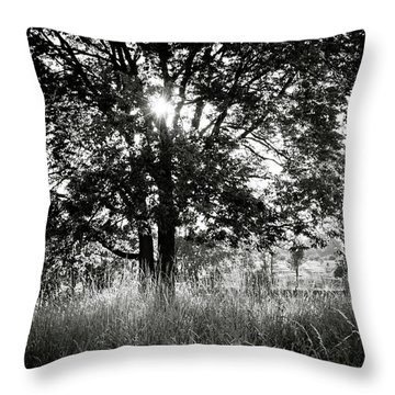 Blazing Tree Throw Pillow