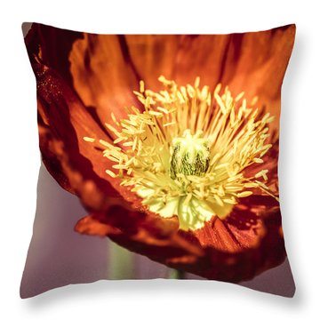 Blazing Throw Pillow