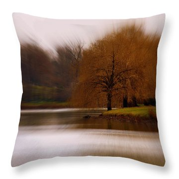Blazing Zoom Throw Pillow