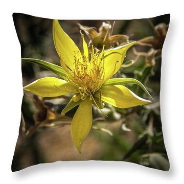 Blazingstar Throw Pillow