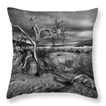 Bleached Bones Throw Pillow