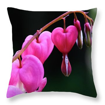 Bleeding Hearts 2 -  Throw Pillow
