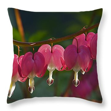 Bleeding Heart 3 Throw Pillow