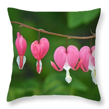 Bleeding Heart Throw Pillow by Alan Lenk