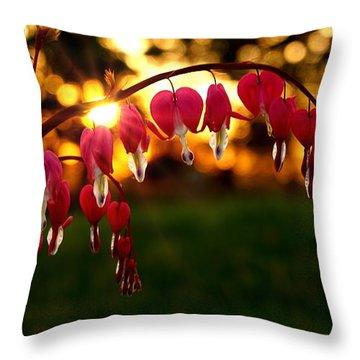 Bleeding Heart Sunset Throw Pillow