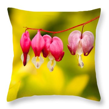 Throw Pillow featuring the photograph Bleeding Hearts by Erin Kohlenberg