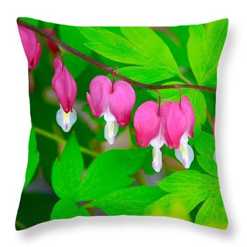 Bleeding Hearts Throw Pillow by Tiffany Erdman
