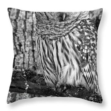 Blending In - 365-187 Throw Pillow