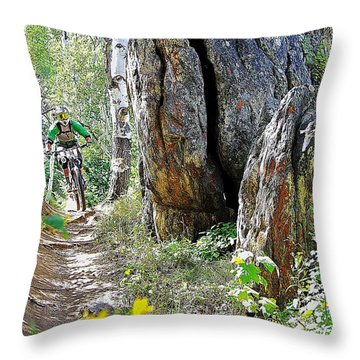 Blending In #44 Throw Pillow by Matt Helm