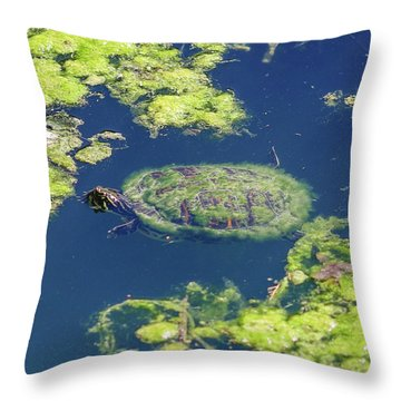 Blending In Turtle Throw Pillow